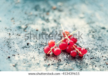 Cranberries on a metal grungy plate. Close-up and soft focus - stock photo