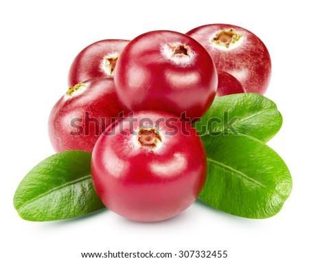 Cranberries with leaves isolated  - stock photo