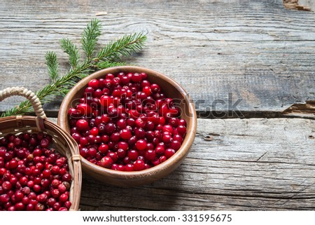cranberry and cowberry - stock photo