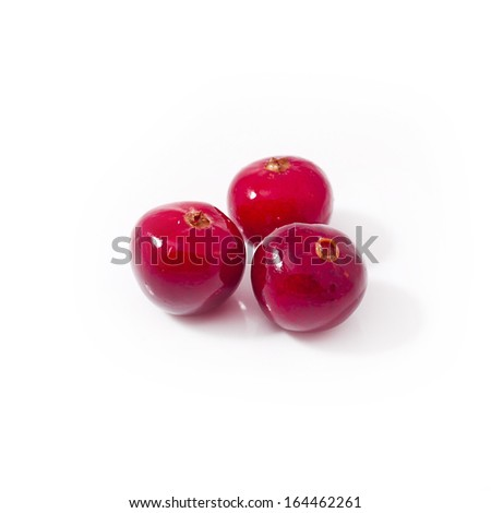 cranberry isolated on white background