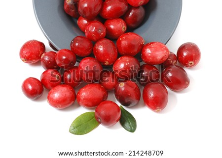 Cranberry on white background - stock photo