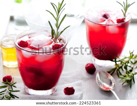 Cranberry, rosemary, gin fizz, cocktail on a white background - stock photo