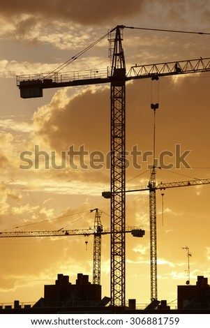 Cranes at dusk in warm tone. Vertical