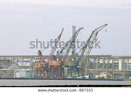 Cranes at Mayer Island - stock photo