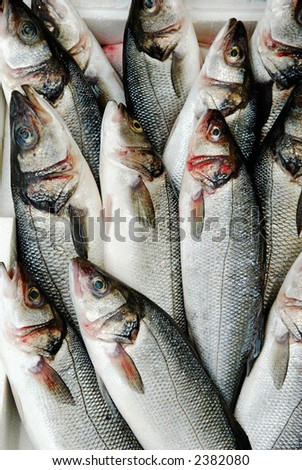 Crate of fish at market - stock photo