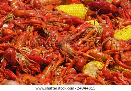 Crawfish and corn spreadout on a table. - stock photo