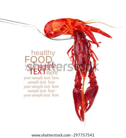 crawfish on fork isolated on white background - stock photo