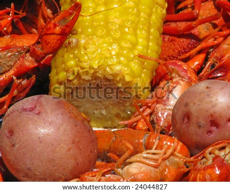 Crawfish potatoes, and corn cob spread out on table closeup. - stock photo