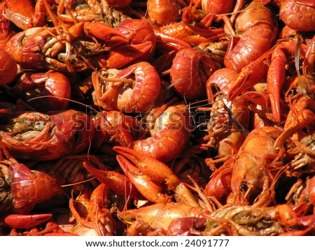 Crawfish spread out on a table closeup. - stock photo
