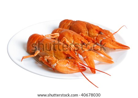 Crawfishes on plate isolated on the white background - stock photo