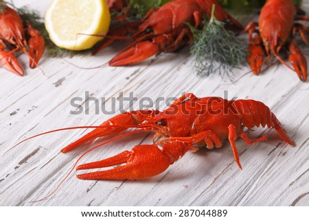 crayfish boiled with lemon and dill on a table close up. horizontal