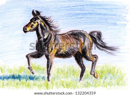 crayon illustration,Horses on the prairie