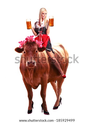 crazy oktoberfest or tiroler creation with a very beautiful woman sitting on a cow and serving beer - stock photo