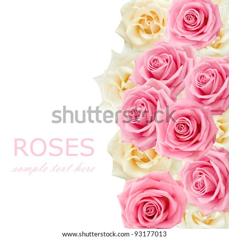 Cream and pink roses background with sample text - stock photo