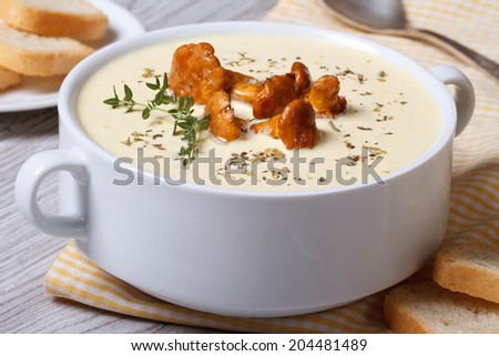cream soup with mushrooms chanterelles, thyme and croutons closeup horizontal   - stock photo