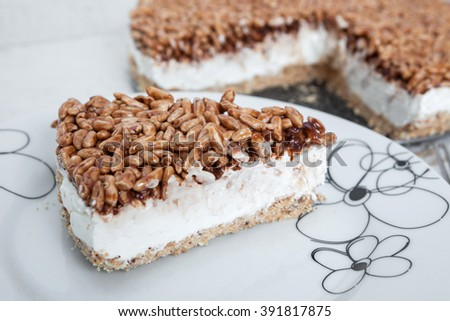 Creamy cheesecake with chocolate and rice - stock photo