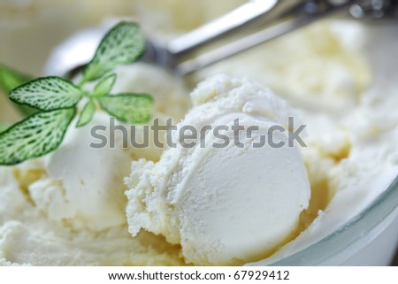 Creamy ice cream with a spoon and leaf