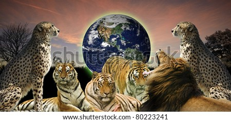 Creative concept image of animal wildlife protecting the planet Earth as it belongs to them as well as humans - stock photo