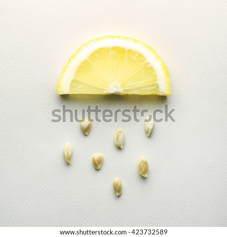 Creative concept photo of a lemon slice with seeds falling down on grey background / Acid rain. - stock photo
