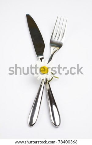 Creative cutlery set (fork, knife) - stock photo
