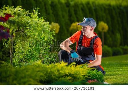 Creative Garden Designer. Professional Gardener Thinking About His Garden Design. Men At Work. - stock photo