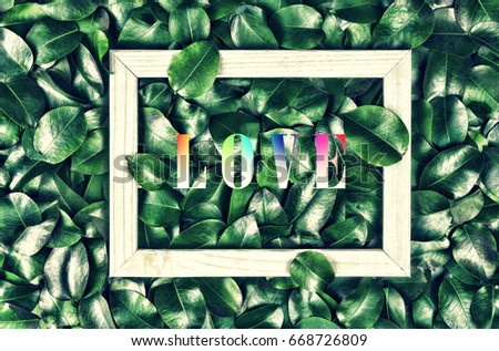 Creative layout made of leaves with a record of the word LOVE or frame. Flat layout. Nature concept