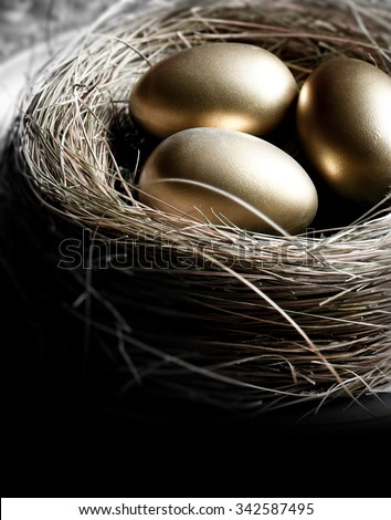 Creatively lit bird nest with gold eggs, shot in natural light. Concept image for pension investments, finance, savings or retirement planning. Accommodation for copy space. - stock photo