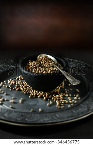 Creatively lit Indian fresh coriander seeds, also called cilantro seeds, against a rustic background with selective focus. Concept image for Indian cooking. Copy space. - stock photo