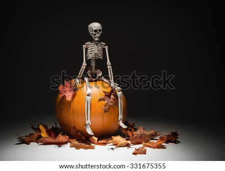 Creatively lit skeleton sitting on pumpkin with autumn leaves and spiders - stock photo