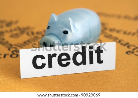 Credit and piggy bank - stock photo