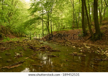Creek - stock photo