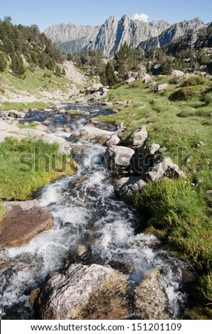 Creek at Aiguestortes and Sant Maurici National Park, Pyrenees (Spain)  - stock photo