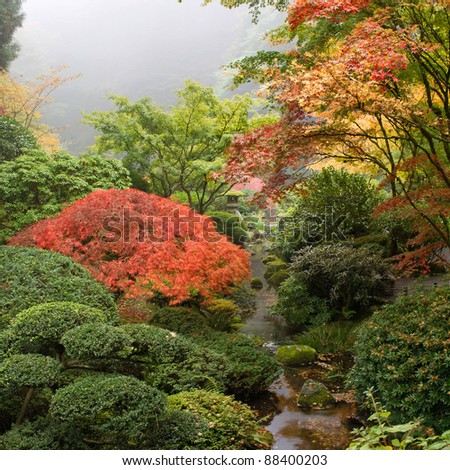 Creek at Japanese Garden One Foggy Morning in the Fall - stock photo