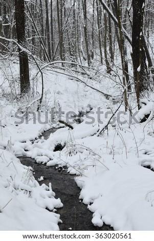 Creek in a snowy forest. Manor Karabiha.Yaroslavl - stock photo