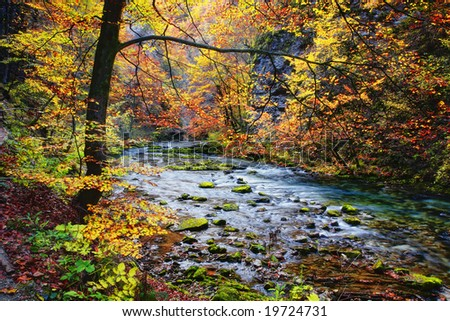 creek in autumnal valley - stock photo