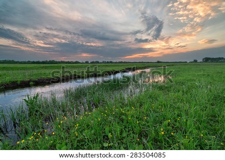 creek in field at sunset