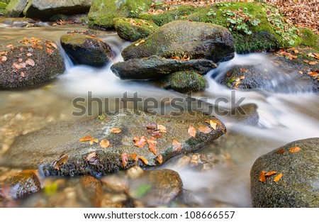 Creek in mountain forest autumn