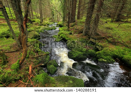 Creek in the beautiful Wilderness, the spring Mountains Sumava in southern Czech