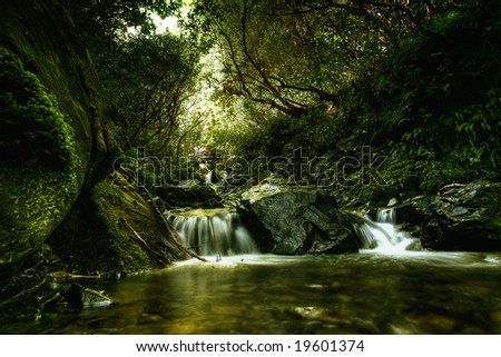 Creek in the forest in New Zealand - stock photo