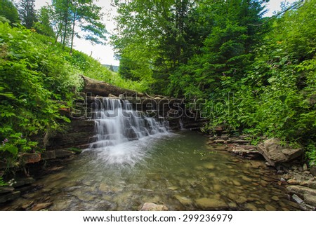 Creek in the forest in the summer on a background of green nature - stock photo