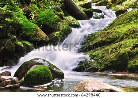 Creek in the national park Krkonose in the Czech Republic - stock photo