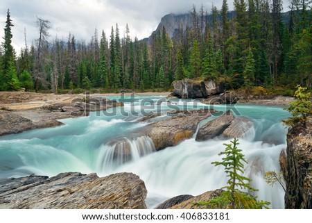 Creek in Yoho National Park in Canada - stock photo
