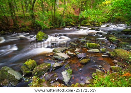 Creek of Clare Glens in Co. Limerick, Ireland - stock photo