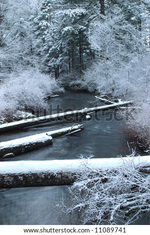 Creek scene with winter snow - Silver Falls State Park