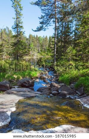 Creek that runs through the woods to the lake - stock photo