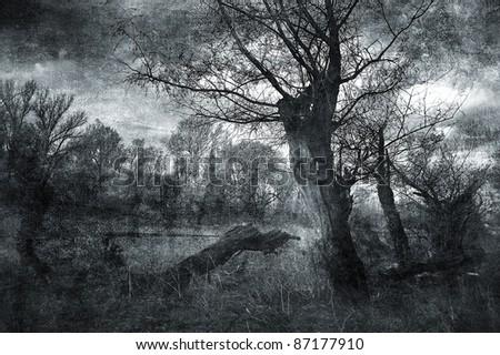 Creepy art grunge landscape in black and white. - stock photo