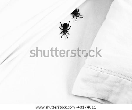 creepy bedbugs - stock photo