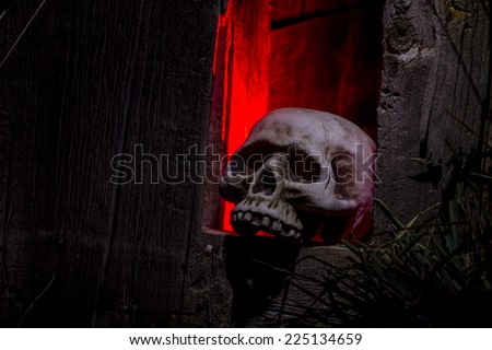 Creepy Halloween skull bones sitting in hole in old abandoned wood building lit with red light - stock photo