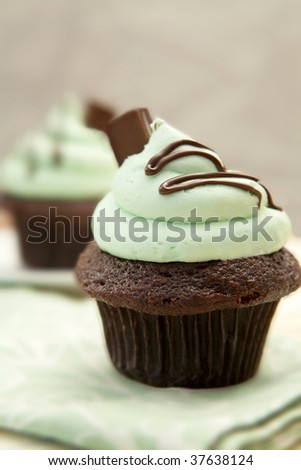 Creme De Mint Cupcake, shallow depth of field - stock photo