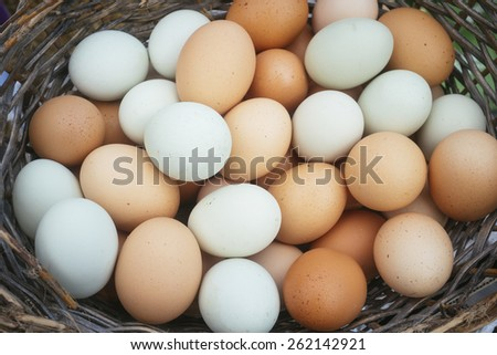 Creole basket with colored eggs of araucanas hens  - stock photo